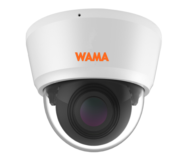FS2-V25S 2MP Face Recognition Dome IP Camera