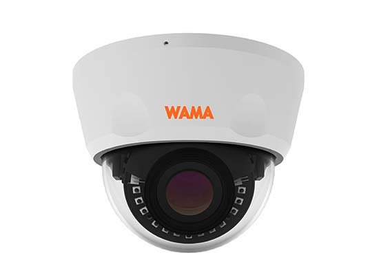 NF4-V22S 4MP Vandal Resistant Dome IP Camera