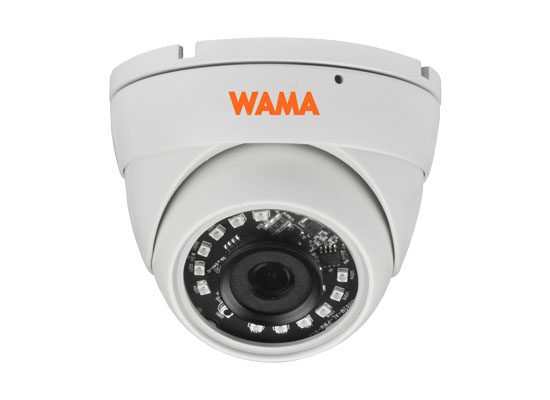 NM2-D22S 2MP Mini Eyeball IP Camera