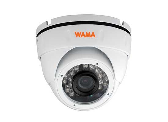 NS2-D22S 2MP Mini Eyeball IP Camera