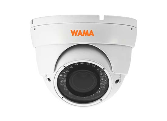 NS2-D34W 2MP Eyeball Dome IP Camera